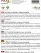 Šalát listový červený LOLLO ROSSA Antioxidant