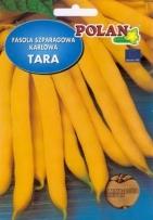 Fazuľa obyčajná Tara