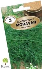 Kôpor voňavý MORAVAN