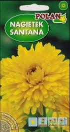 Nechtík lekársky plnokvetý SANTANA – 3 g