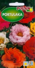 Portulatka veľkokvetá zmes farieb