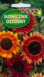 Slnečnica okrasná červená zmes Polan – 5 g