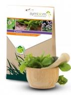 Mykorhízne huby – Symbivit bylinky 90 g