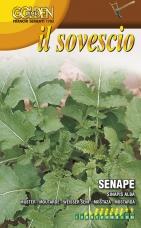 Horčica biela - zelené hnojenie - 100 g