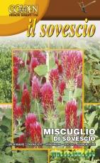 Zmes rastlín na zelené hnojenie - 100 g